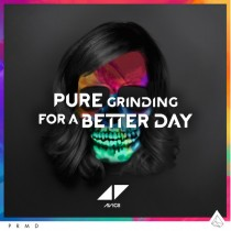 Avicii 'For A Better Day' (PRMD/Universal)