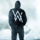 Focus : Alan Walker